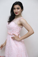 Sakshi Kakkar in beautiful light pink gown at Idem Deyyam music launch ~ Celebrities Exclusive Galleries 052.JPG