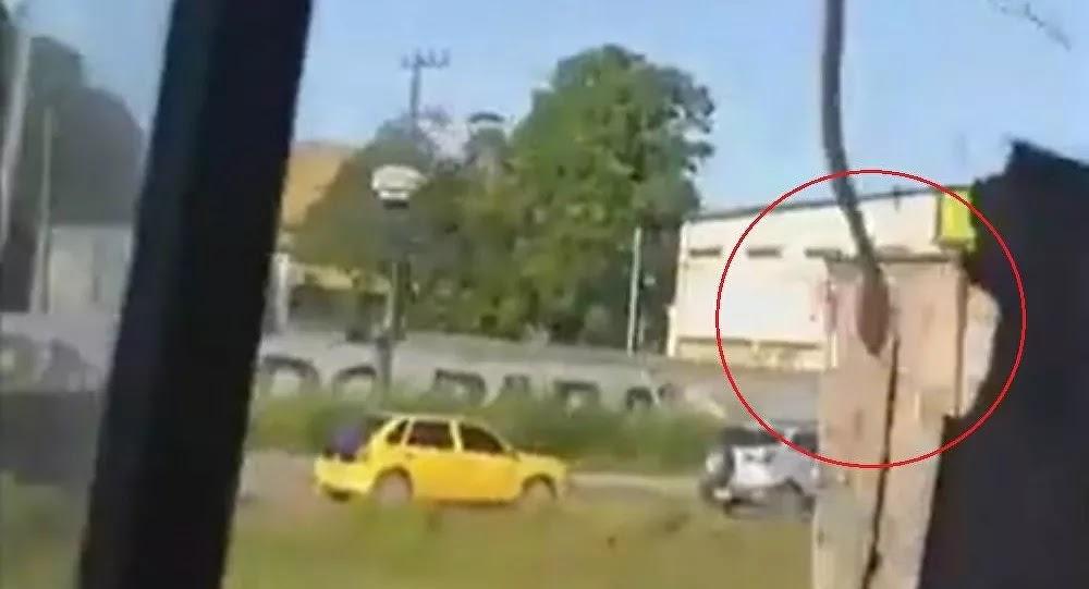 Βραζιλία: Φίδι μπαίνει σε λεωφορείο από το παράθυρο - Βίντεο