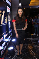 Meghana Gore looks super cute in Black Dress at IIFA Utsavam Awards press meet 27th March 2017 47.JPG