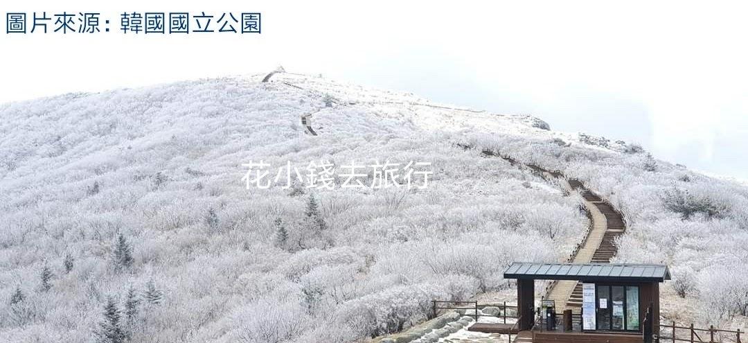2020-2021韓國雪季:4月24日下雪情報+降雪預測 - 花小錢去旅行