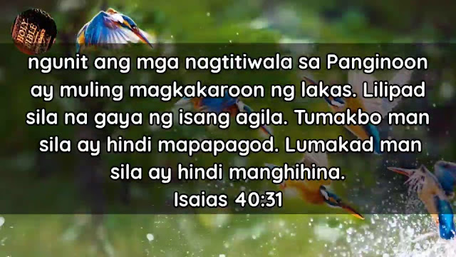Give Thanks To The Holy One Tagalog Bible Verse About Amazed