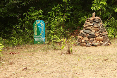 Forest Department MileStone