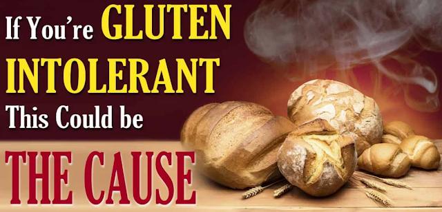 We're Not Gluten Intolerant, We're Glyphosate Intolerant