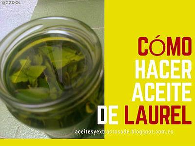 Aquí te explicamos como hacer Aceite de Laurel Casero