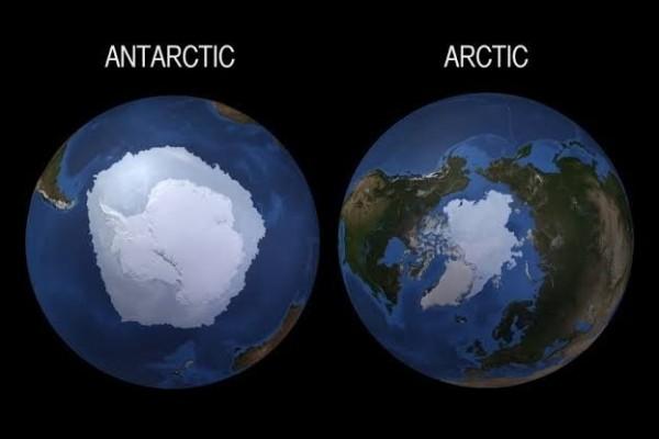 5 Fakta Menarik Perbedaan Kutub Utara dan Kutub Selatan