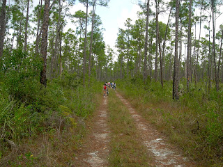 Bike Riding at Long Pine Key in the Everglades National Park