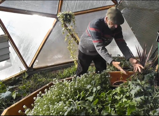 Gardening inside the Greenhouse