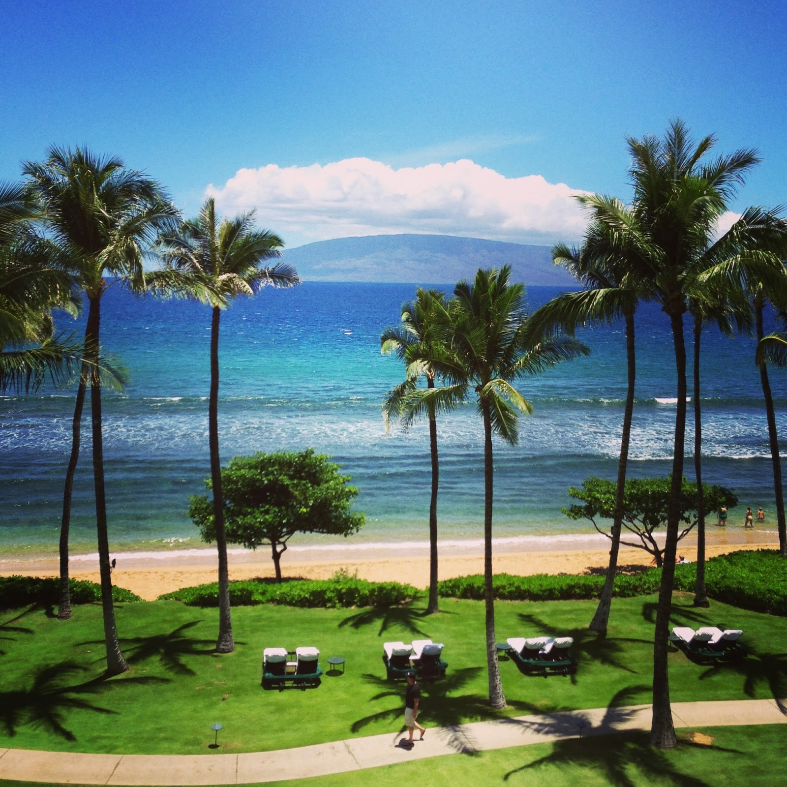 Maui Scenery Julia Kingsley