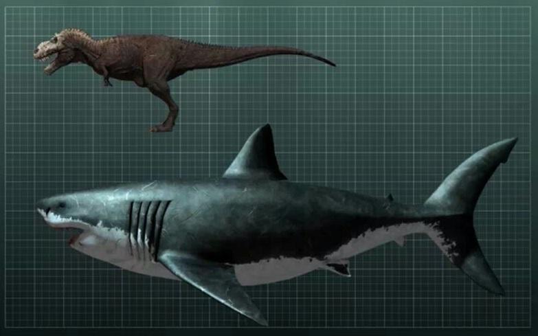 Peces prehistóricos gigantes