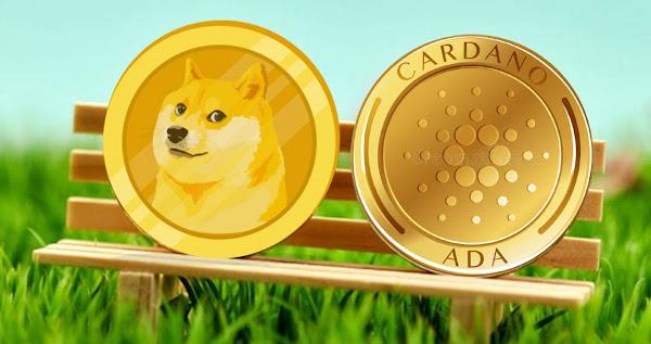 dogecoin cardano günlük detaylı fiyat analizi