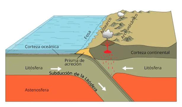 Una zona de subducción es un lugar donde una placa tectónica de la litosfera se coloca debajo de otra.