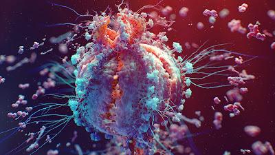 RARE Autoimmune Diseases