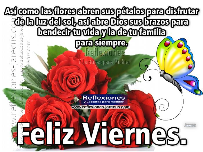 Feliz viernes, Así como las flores abren sus pétalos para disfrutar de la luz del sol, así abre dios sus brazos para bendecir tu vida y la de tu familia para siempre. Feliz viernes.