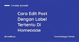 Cara Edit Post Dengan Label Tertentu Di Homepage