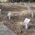 Postavljeno 55 zasebnih spomenika (nišana) palim borcima u MZ Poljice