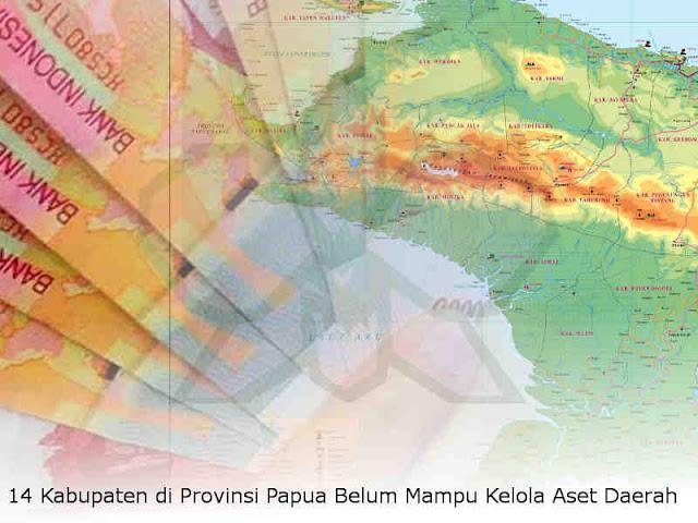 14 Kabupaten di Provinsi Papua Belum Mampu Kelola Aset Daerah