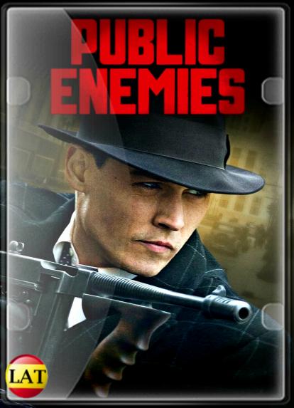 Enemigos Públicos (2009) DVDRIP LATINO