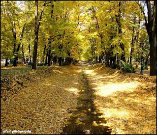 Vrnjacka banja u jesen