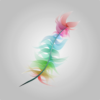 wallpaper feather colorfull