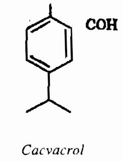 Thành phần hóa học HÚNG CHANH - Coleus aromaticus Benth - Nguyên liệu làm thuốc Chữa Ho Hen