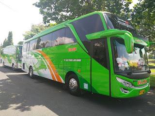 Bus Pariwisata SHD Seat 50 Jogja