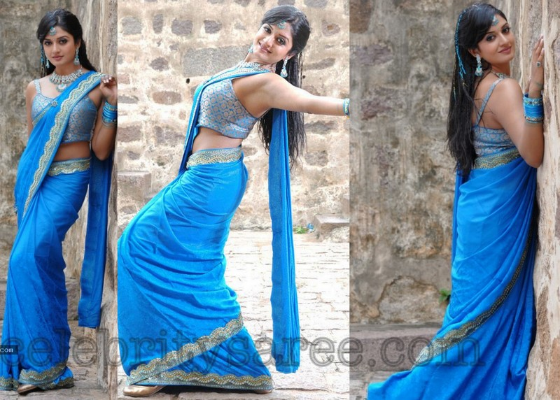 c15c94cfb5824 South Indian actress Vimala Raman in sky blue chiffon saree with shimmering  lace border
