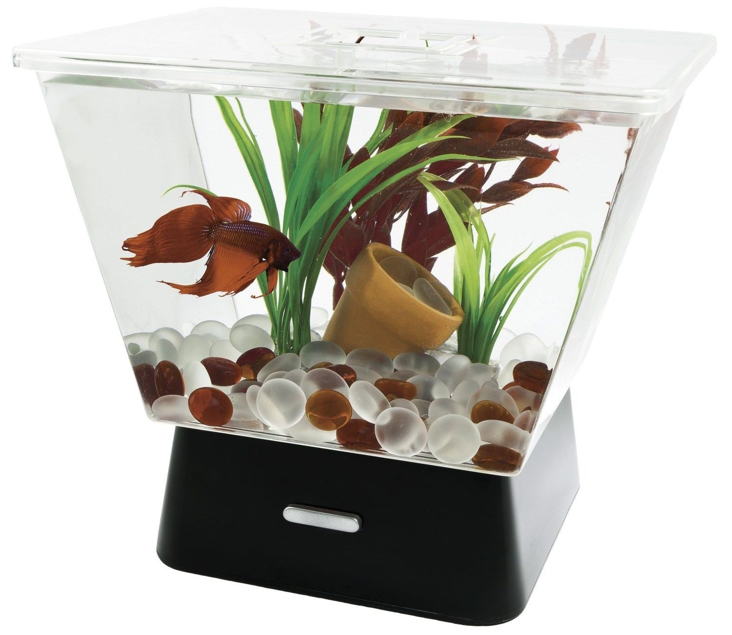 Model dan harga aquarium mini cara budidaya ikan for Betta fish tanks amazon