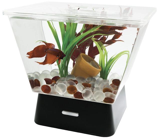 Aquarium Mini Trapesium - Budidaya Ikan