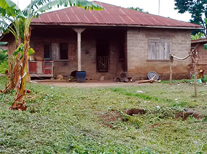 Photo: Emmanuel Adebayor's Family House In Igbaye Osun ... Emmanuel Adebayor House