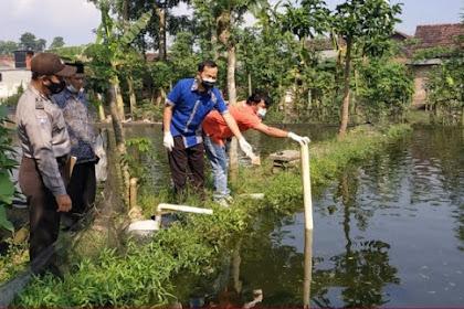 Naas, Balita 2,5 Tahun di Tulungagung Tewas Tercebur Kolam Ikan