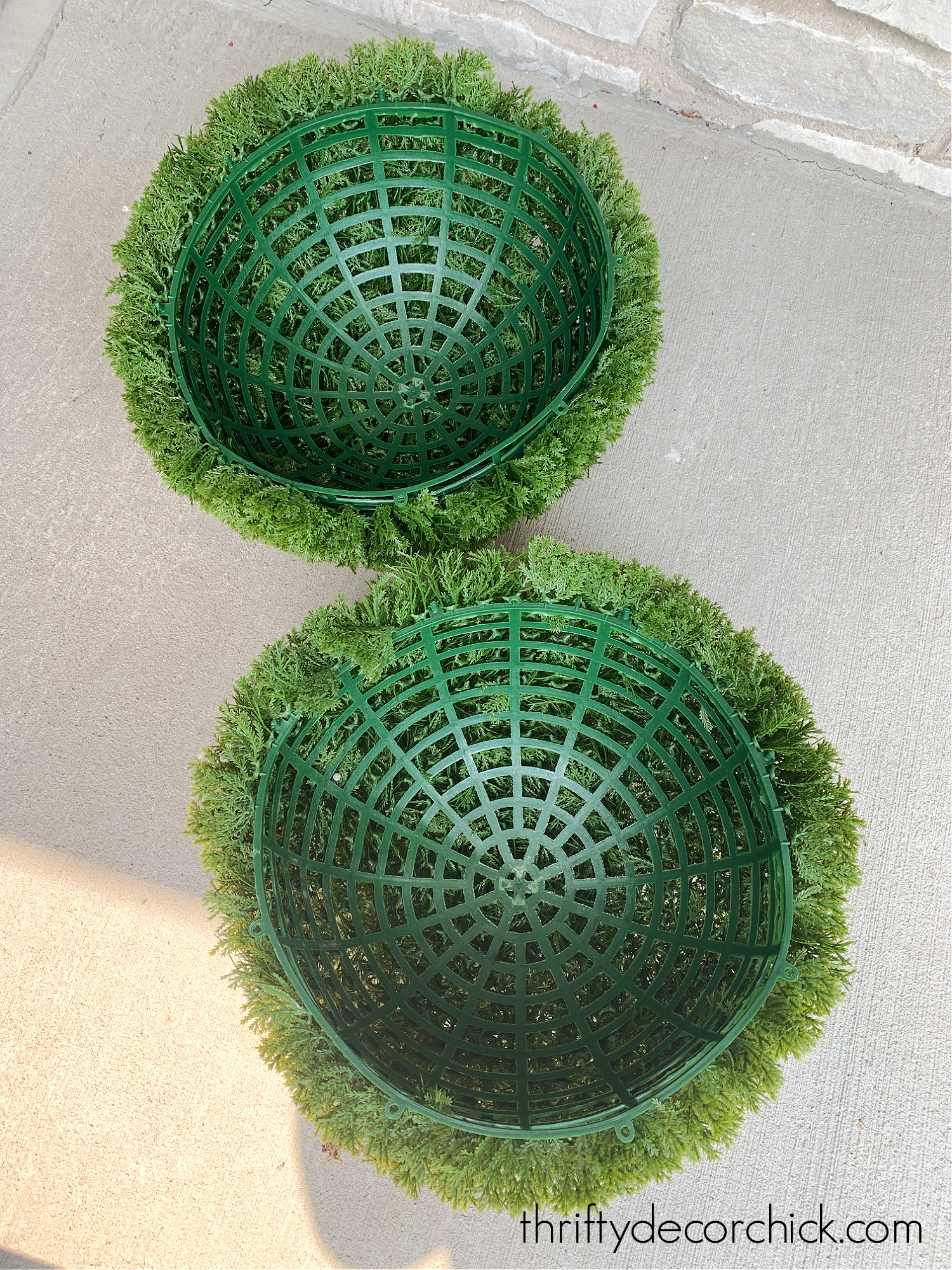 large round topiary in two