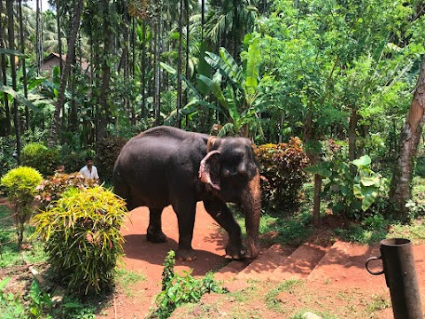 TOP 5 PLACES TO VISIT IN NORTH GOA