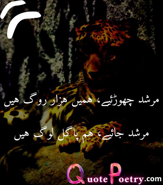 Attitude Status In Urdu/hindi