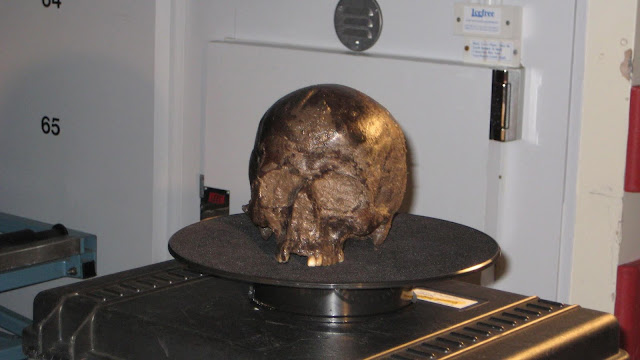 Scientists discover key to Iron Age 'Heslington brain' preservation