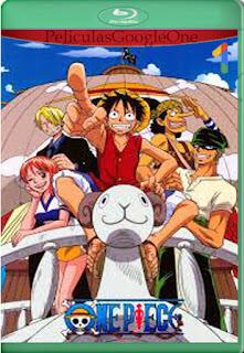 One Piece Saga del East Blue Completa [720p BRrip] [Latino-Inglés] [LaPipiotaHD]