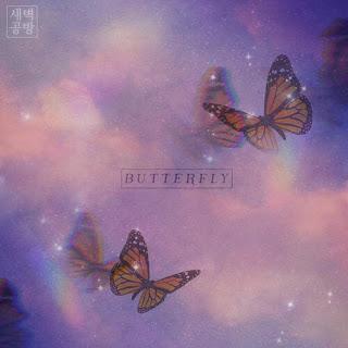 SBGB (새벽공방) Butterfly
