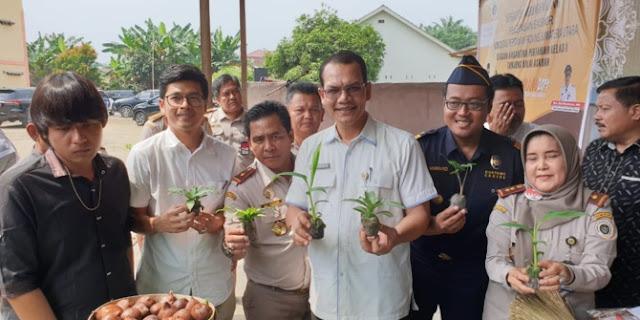 Produk Hortikultura Asal 6 Kabupaten di Sumut, Laris di Pasar Ekspor