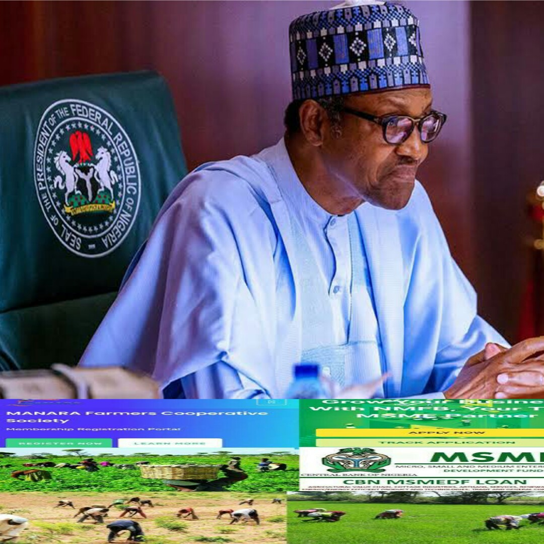 15 Collection of Youth Empowerment Federal Government Loans, 2020/2021
