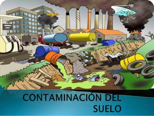 C mo evitar la contaminaci n del suelo salvemos verde - Como solar un suelo ...