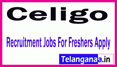 Celigo Recruitment Jobs For Freshers Apply