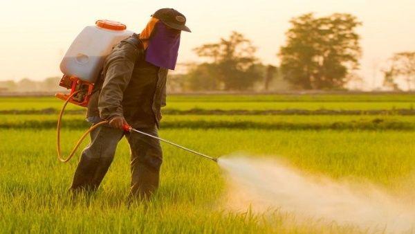 Gobierno de Bolsonaro aprueba más de 30 nuevos agrotóxicos