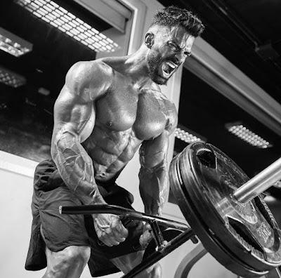 Sergi Constance - Workout Routine, Diet Plan & Supplements | Beingfitaholic