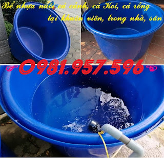 Bồn nhựa tròn nuôi hải sản, bồn nhựa nuôi cá trong nhà