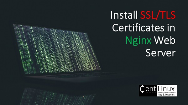 install-ssl-tls-certificate-in-nginx-web-werver