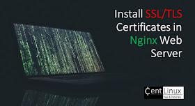 Install SSL/TLS Certificates in Nginx Web Server