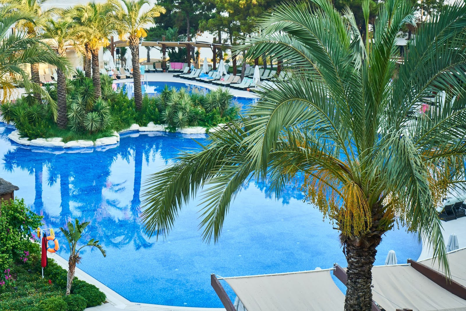 Pool Landscaping Design Ideas To Improve The Garden Appearance