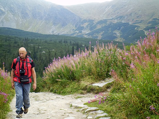 Dolina Zielona Gąsienicowa.