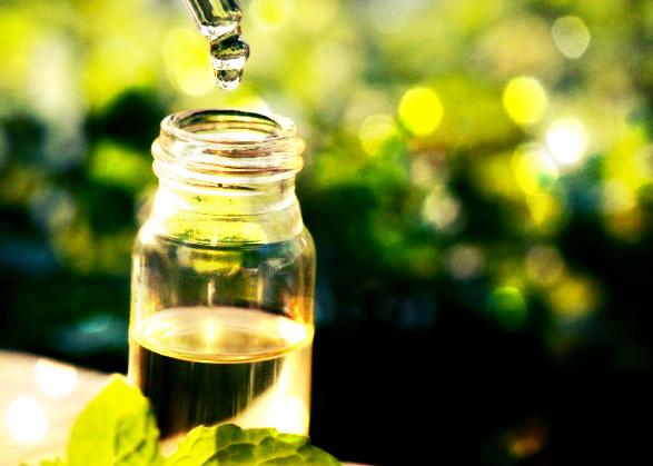 Huile essentielle de tea tree arbre th utilisations - L huile essentielle d arbre a the ...