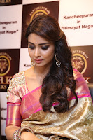 Actress Shriya Saran Stills in Saree at VRK Silks Launches at Himayat Nagar  0008.JPG