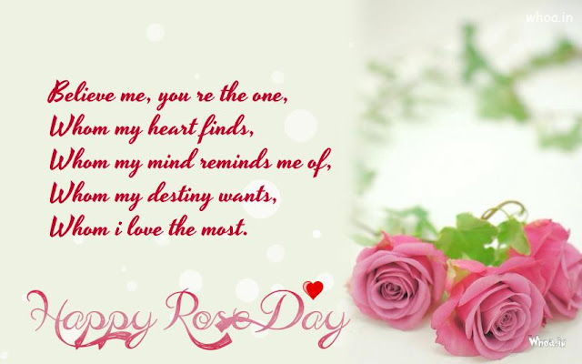 rose day2